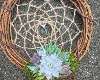 Living Succulent Dreamcatcher Wreath (made-to-order)