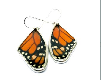 Monarch Butterfly, Real Butterfly, Butterfly Wing Earrings, Butterfly Jewelry