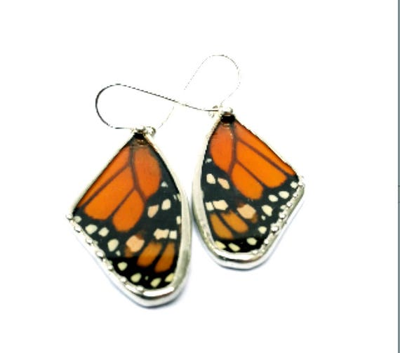 Monarch Butterfly, Real Butterfly, Butterfly Wing Earrings, Butterfly Jewelry