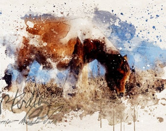 Chincoteague Pony - Photographic Watercolor Style Wall Art, Fine Art Print