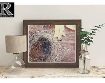 Printable Instant Download Autumn Leaves Birds Nest Rust Copper Empty Bird Nest Fall Leaves print rustic wall art farmhouse nature art photo