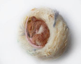 Needle felted Mouse sleeping in Nest life-sized figure Numbered Collectable
