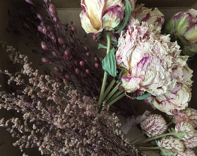 Bloomery Blend No. 0020: Short Stem Peonies & Mini Natural Flower Bunches /  Pink - Aubergine