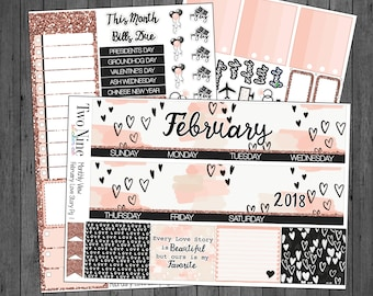 February  Monthly Sticker Kit: Love Story, Erin Condren Stickers, February Stickers, Valentines Planner stickers