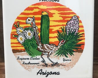 Arizona wall tile decorative