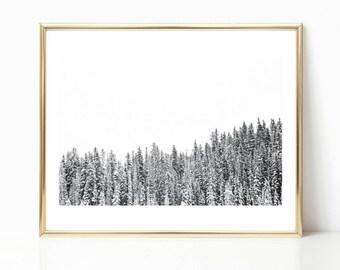 Black and White Decor Art // Trees Wall Art // Large Wall Art // Minimalist // Trees Art Prints // Canada // Lake Louise // Winter Wall Art