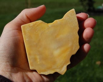Buckeye State Soap - State of Ohio Soap - Pumpkin Puree Soap - Pumpkin Pie Scented Soap - Stocking Stuffer - Ohio Housewarming Gift - Rustic