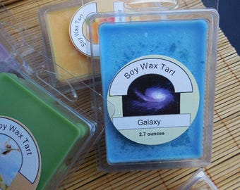 Foodies' Wax Melts / Soy Wax Tarts / Set of 3