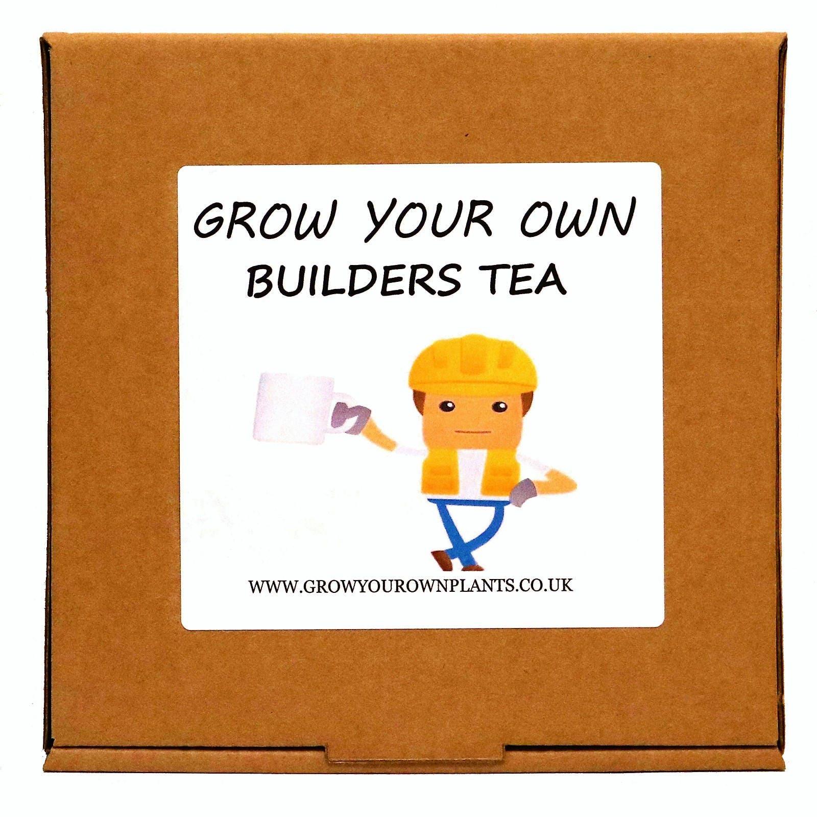 Gardening gift for men or women grow your own camellia for Gardening gifts for men