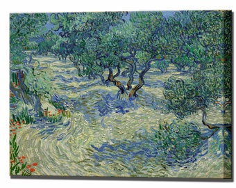 Olive Trees Van Gogh Canvas Print Home Decor Vincent Ready To Hang Canvas Art