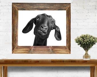 Goat - Farm Animal -  Digital Download - JPG - Last Minute Gift - Animal Print