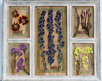 Pressed Flowers, pressed botanicals, Herbarium, 15,4x18,4 inches, (39x47 cm) Framed, Pressed Flower Art,press flowers framed, dried herbs