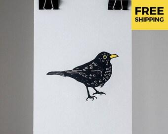 Print of a common blackbird 20x30 cm /free shipping/