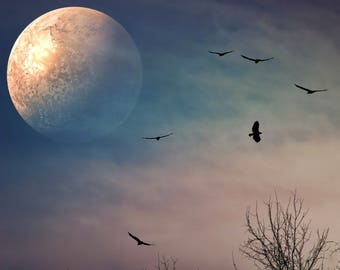 OOAK Surreal Fantasy Moon Birds Trees Silhouettes Edited Photograph Print