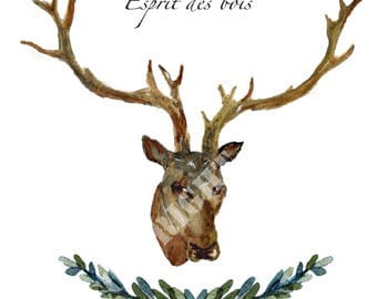 Deer, woodland spirit card