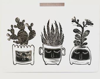 Cactus succulent trio Monochrome botanic art prints, wall art, wall decor, living room wall art, bedroom wall art,Illustration