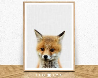 Fox Cub Print, Woodlands Nursery Decor, Baby Animal Poster, Digital Download, Large Printable Photo Poster, Minimalist, Babies Room Fox Art