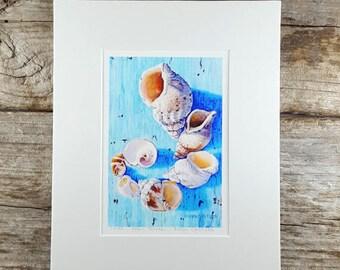 Shell Art Print, Teal Shell Print, Turquoise Wall Art, Shell Wall Art, Beach House Decor, Beach Decor, Beach House Art, Shell Art Decor
