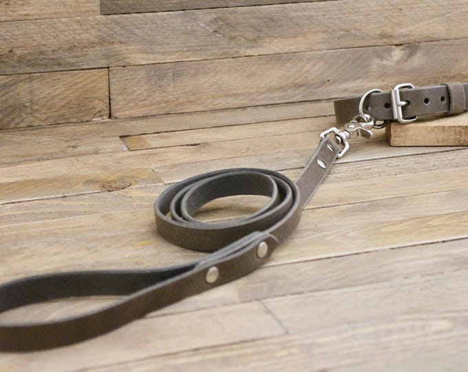 Leather dog collar, Dog leash, Set, Wolf grey color, FREE ID TAG, Handmade leather collar, Silver hardware, Leather leash, Dog collar, dog.
