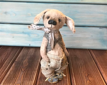 Dog Teddy Phill