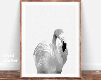 Flamingo Digital Print, Chic Black and White Tropical Wall Art, Tropical Digital Art, Printable Flamingo, Flamingo Art Print Poster