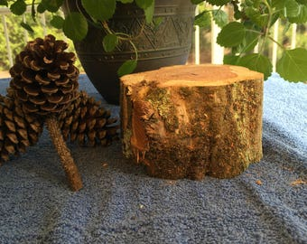 Raw Block of Aromatic Cedar #2