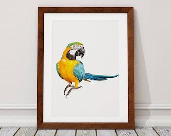 Macaw Digital Download, Macaw Digital Print, Macaw, Parrot, Digital Download, Digital Print