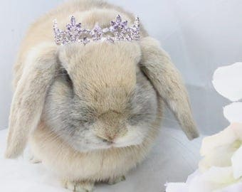 Purple Rhinestone Crown / Purple crown for rabbits, dogs and small pets