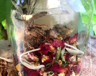 Mummified Mouse Apothecary Jar