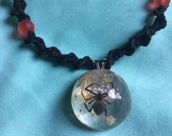 Real Black Widow Spider Necklace