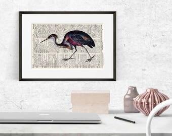 Print no. Heron. 1 - antique book page - landscape