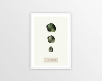 A4, eucalyptus, Wall art, Decoration, Home decor, Print, Mural Art, botanical, herbarium, leaves