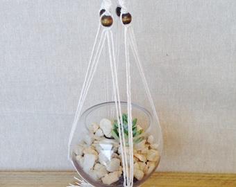 Neutral Macrame Hanger with Glass Sphere and Succulent, DIY Terrarium Kit, Succulent Terrarium, Hanging Plant, Green Thumb gift, glass bowl
