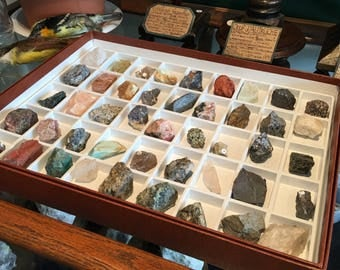 Collection of minerals with 45 rock box
