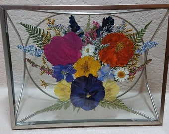 Multicolored pressed flowers