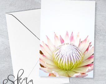 Blank card, protea card, anniversary card, last minute card, printable card, wedding card, card for girlfriend, card for wife, protea, pink
