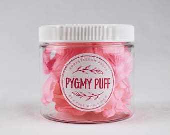 Pygmy Puff: bookstagram prop flower petals (pink) 16oz