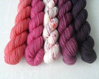 JUICE BOX - Bite-Size Mini Set of 5 - Hand Dyed Yarn – Fingering Superwash Tonal Yarn