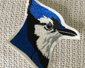 BEAUTIFUL BLUEJAY Head Patch Mint Condition Detailed Item WILDLIFE Bird BlueJays