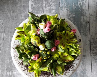 A tutorial to make this realistic succulents cake.