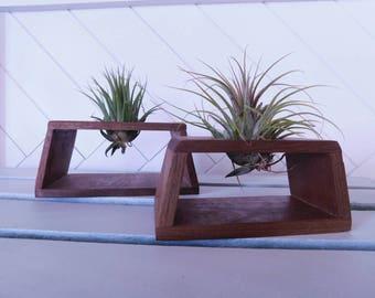 Air Plant Display - Planter - Wooden Planter - Mini Planter - Walnut Planter - Air Plant Holder - Magnetic