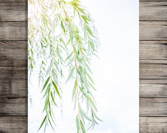 Weeping Willow Tree Print, Printable Photography, Pastel Nursery Wall Art, Farmhouse Style Wall Art, Instant Download Printable Office Print