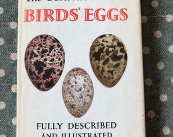 Observer Book of Birds Eggs Old Style Dust Jacket 1961