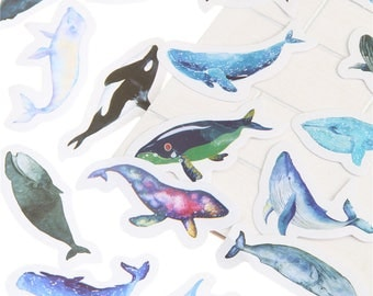 15 Whale Planner Stickers - Bullet Journal - Scrapbooking - Beautiful Watercolor Designs - Ocean, Dolphins, Orcas, Fish