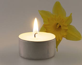Daffodil Scented Vegan Soy Handmade Scented Tealights