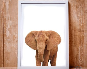 Elephant Print, Elephant Art, African Art, African Animal, Safari Animal, Elephant Wall Art, Elephant Photo, Animal Print