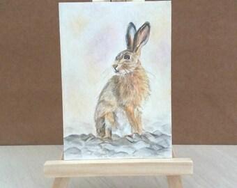 ACEO drawing, hare portrait, original fine art, colored pencil drawing, woodland portrait, woodland art, hare pencil drawing, rabbit drawing