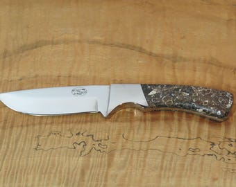 Turritella knife scales with stainless steel blade