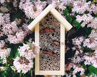 Insects-apartment hand-crafted made - natural roof