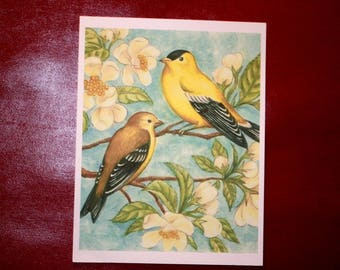 "ART PRINT Birds and Blossoms in Springtime 8 1/2"" X 11"""